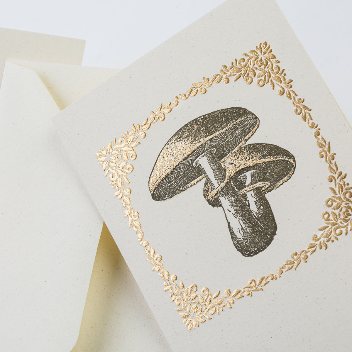Carta italiana tipografica con funghi